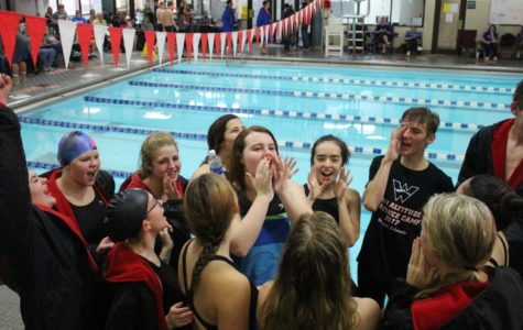 Swimmers Making a Comeback