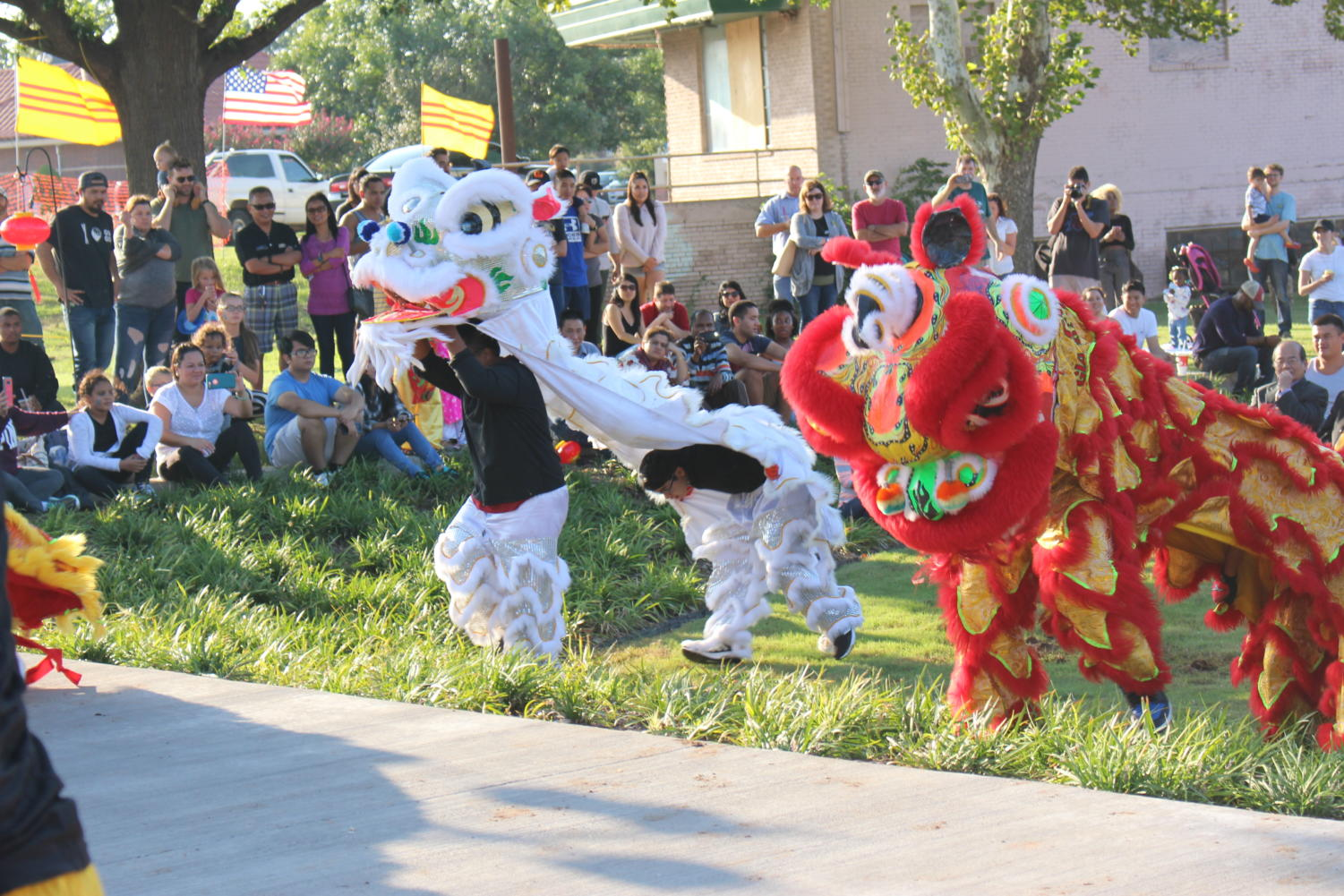 Lion dancers perform their